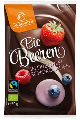 Bild von Bio Beeren in dreierlei Schokoladen