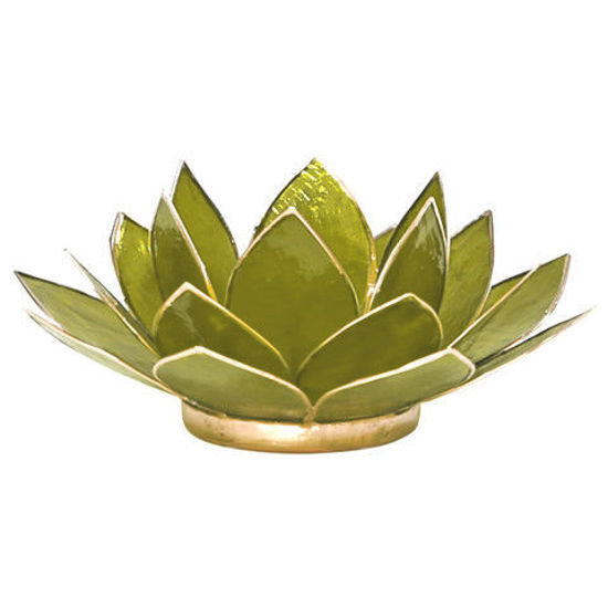 Bild von Capiz Lotus Teelichthalter lime